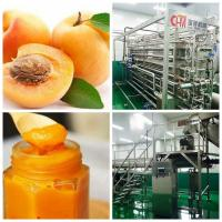 China Peach \ Apricot \ Glass Bottle Beverage Production Line Per Hour for sale