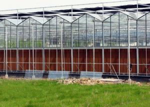 Wholesale Steel Vegetables Hydroponic Multi Span Glass Greenhouse from china suppliers