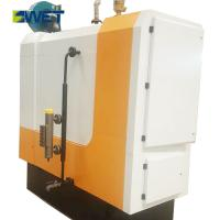 China Small Capacity Industrial Steam Boiler For Food Industries 0.7T Weight on sale