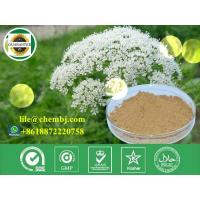 Buy cheap Osthole 484-12-8 Anti-Hypertension Pharmaceutical Raw Material Plant Extract from Wholesalers