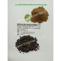 China Chinese herbal extract manufacture, natural herb beverage ingredients, Oriental Raisin Tree Extract,  for drunkenness on sale