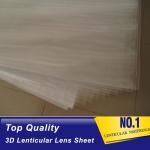 China PLASTICLENTICULAR 100 LPI 3d lenticular printing blank lenticular sheets Plastic PP PET 3D Lenticular Lens Sheet for sale