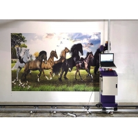 Wholesale DX5 DX7 DX800 Head 0.5CM 20ML/㎡ Wall painting Machine for outdoor and indoor wall usage from china suppliers