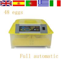 Wholesale Best quality mini egg incubator for sale HT-48 from china suppliers