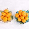 Fresh Guangdong Mashui Mandarin for sale