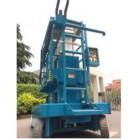 Quality Blue Hydraulic Aerial Work Platform Dual Mast With 10m Working Height for sale