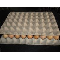 Wholesale high quality egg tray making machine from china suppliers