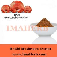 China Organic and GMP whole sale reishi mushroom extract powder with polysaccharide 30% Wholesale on sale