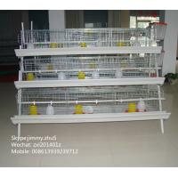 Wholesale Chicken Poultry Broiler Layer Farm Equipment For Sale Baby Chick Cage With Poultry Nipple Drinking Water System from china suppliers