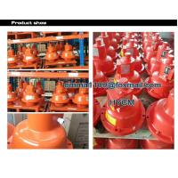 China Spare Parts Anti falling Protection Device China SAJ Model of Hoist for sale