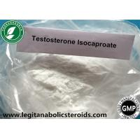 Wholesale White Steroid Powder Testosterone Isocaproate For Gain Mass CAS 15262-86-9 from china suppliers