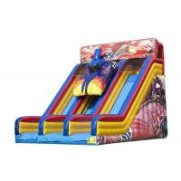 Wholesale Entertainment Large Blow Up Slide For Commercial Or Personal 8.23 * 5.95 * 6.48m from china suppliers
