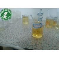 Wholesale CAS 315-37-7 Bodybuilding Steroid Liquid Oil Testosterone Enanthate 250mg/Ml from china suppliers