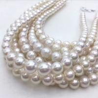 Wholesale Wholesale High Quality DIY Handmade 10mm Round  White  Shell Pearl Beads Strand from china suppliers