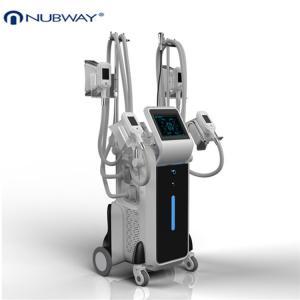 Buy cheap beauty machine 2014/Top fat freezing machine/cryolipolysis machine from wholesalers