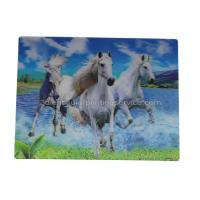 Wholesale UV Offset Printing Lenticular 3D Fridge Magnets For Gift , Printed Fridge Magnets from china suppliers