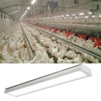 Buy cheap No Dimmable Version LED Tri Proof Light 4ft 20/30/40/60 Watt For Poultry Farm from wholesalers