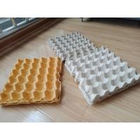 Hot Pressing Pulp Molding Machine , Egg Tray Production Line With Germany Valves