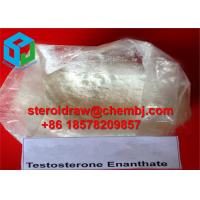 Wholesale Nature Testosterone Enanthate Raw Testosterone Steroids powder for Fat Burning from china suppliers