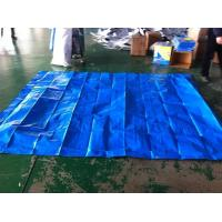 10*10ft / blue color / 160gsm PE TARPAULIN for waterproof cover for sale