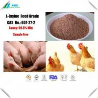 98.5 % Purity Food Grade Amino Acids L Lysine For Animal Nutrition Supplement