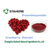 Wholesale Cranberry extract Antioxidant Dietary Supplement proanthoyanidin 25% for food from china suppliers