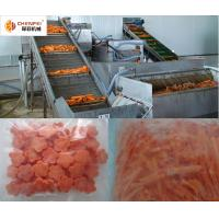 Carrot Beverage Processing Plant Full Automatic Easy Operation 1 Year Warranty for sale