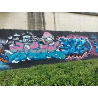 China Custom Graffiti Water Based Spray Paint No Harmful For Cupboard / Fence for sale