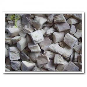 China Mushrooms,Oyster Mushroom,Pleurotus Ostreatus,Wild Mushrooms on sale