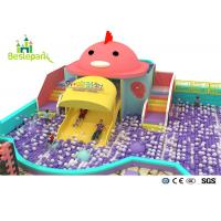 Wholesale Rainbow Chicks Kids Plastic Indoor Playground With Slide Multi - Functional from china suppliers