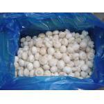 China Frozen Champignon whole for sale