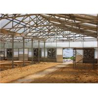 Wholesale Integrated PV Panel Mounting Systems Greenhouses Thin Film Module Support Structure from china suppliers