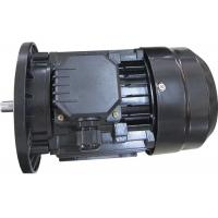 MINGDONG MS Series 3 Phase Induction Motor , 2 Pole Electric Motor B3 B5 B14 High Efficiency for sale