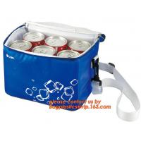 polyester cheap simple insulated cooler bag for food, Promotional custom recyclable aluminum foil picnic insulated lunch for sale