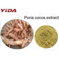 Wholesale 100% Natural Poria Cocos Powder Extract Brownish Yellow Color Food Grade from china suppliers