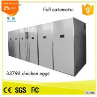Wholesale High Quality HT-33792 egg incubator china egg incubator solar energy egg hatcher from china suppliers