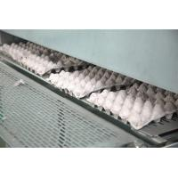 Small Pulp Molding Machine , Egg Tray Production Line , Egg Tray Machine