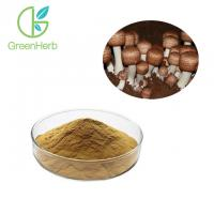 China 100% Pass 80 Mesh Mushroom Polysaccharides Agaricus Blazei Extract Anti Tumor on sale