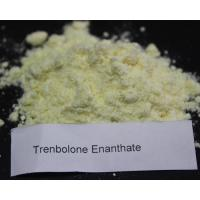 Trenbolone Enanthate Powder Pharmaceutical Grade Parabolan Steroid  Cas 10161 33 8 pure 99.9% for sale