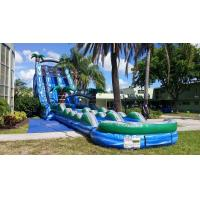 Wholesale Blue Jungle Theme Large Double Lane Water Slide With Big Pool from china suppliers