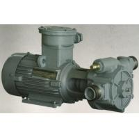 Wholesale Economic Electric Transfer Pumps For Fuel 0.05 Mpa 3 Bar 1400RPM from china suppliers