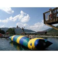 Wholesale Jumping Water Blogs Inflatable Water Toys For Pool , Durable PVC Tarpaulin from china suppliers