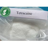 Wholesale Pharmaceutical Medical Anesthetic Raw Powder Tetracaine For Pain Killer from china suppliers