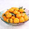 Seedless Citrus Guangdong Spring Mandarin for sale