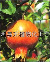 Wholesale Production Name:PomegranateRindExtract from china suppliers