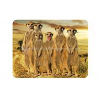 Wholesale Custom Animal 3D Fridge Magnets PET Lenticular Thickness 0.6mm from china suppliers