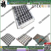 Wholesale Pulp Moulding Mould and Finish Product Egg Tray Mold from china suppliers