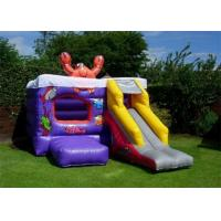 Wholesale Grassland Inflatable Bouncer , PVC Material Small Slide Bouncer For Kids from china suppliers