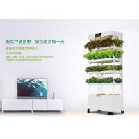 Wholesale 220W Indoor Smart Hydroponics System Vertical Farming Environmental Friendly from china suppliers