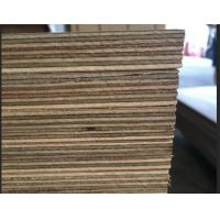 Wholesale Marine Grade Commercial Plywood Okoume Face / Back With Phenolic Glue from china suppliers